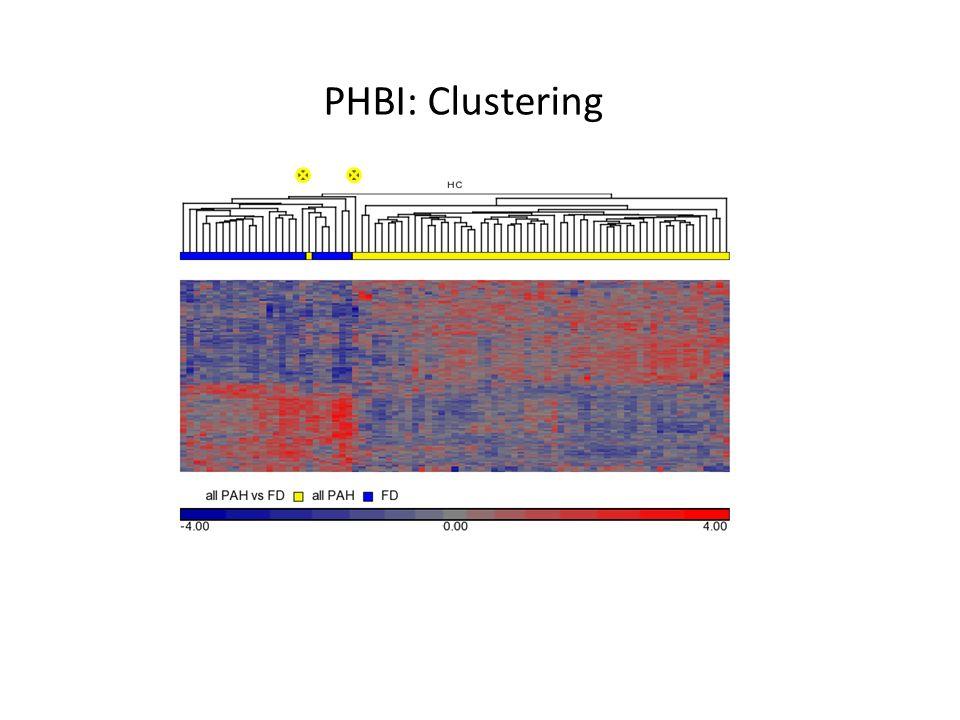 PHBI: Clustering