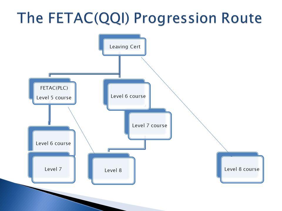 Leaving Cert FETAC(PLC) Level 5 course Level 6 courseLevel 7Level 7 courseLevel 8Level 6 courseLevel 8 course