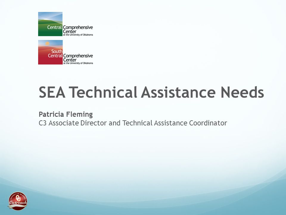 SEA Technical Assistance Needs Patricia Fleming C3 Associate Director and Technical Assistance Coordinator