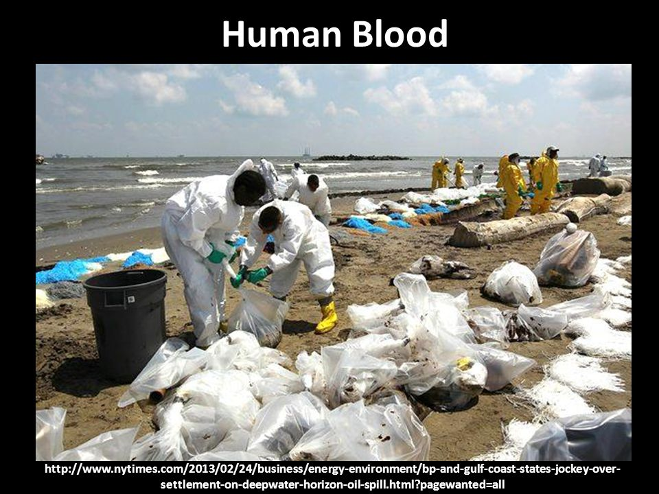 http://www.nytimes.com/2013/02/24/business/energy-environment/bp-and-gulf-coast-states-jockey-over- settlement-on-deepwater-horizon-oil-spill.html pagewanted=all Human Blood