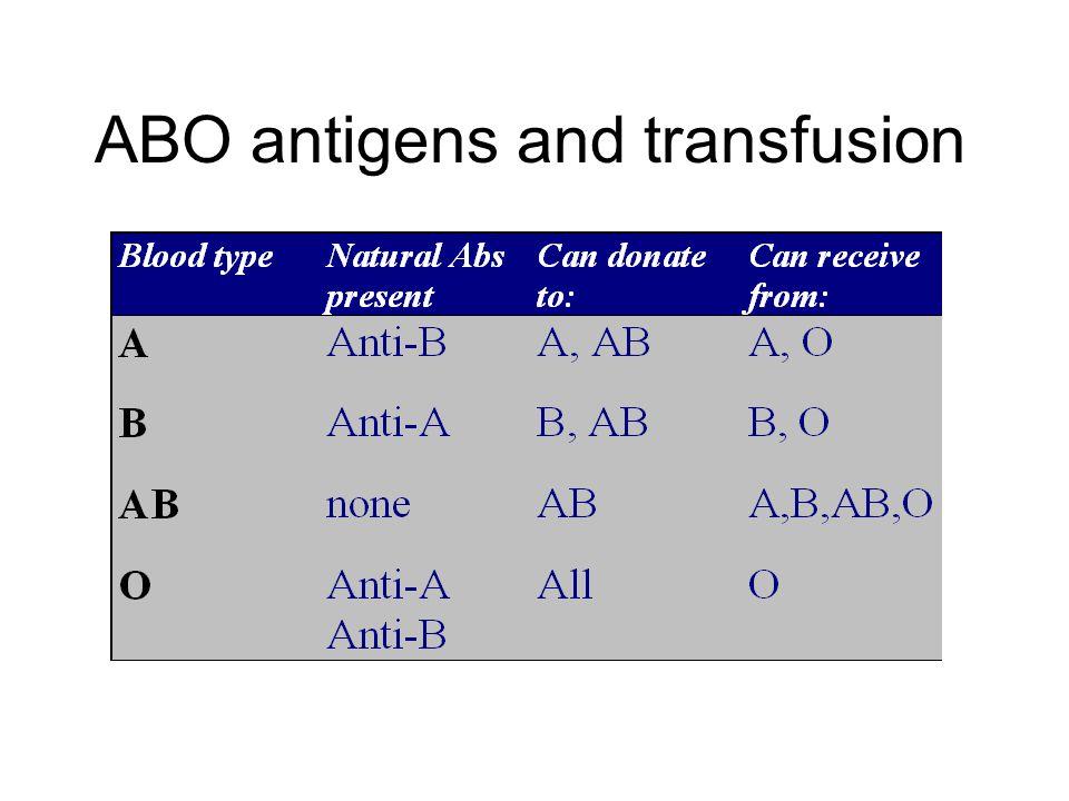 ABO antigens and transfusion