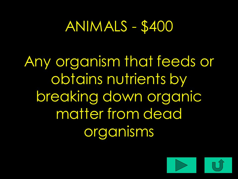 C1-$400 ANIMALS - $400 Any organism that feeds or obtains nutrients by breaking down organic matter from dead organisms