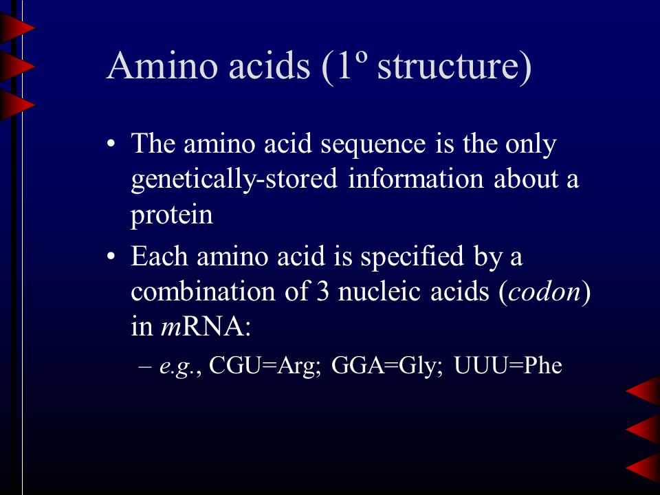 Amino acids (1º structure) The amino acid sequence is the only genetically-stored information about a protein Each amino acid is specified by a combination of 3 nucleic acids (codon) in mRNA: –e.g., CGU=Arg; GGA=Gly; UUU=Phe