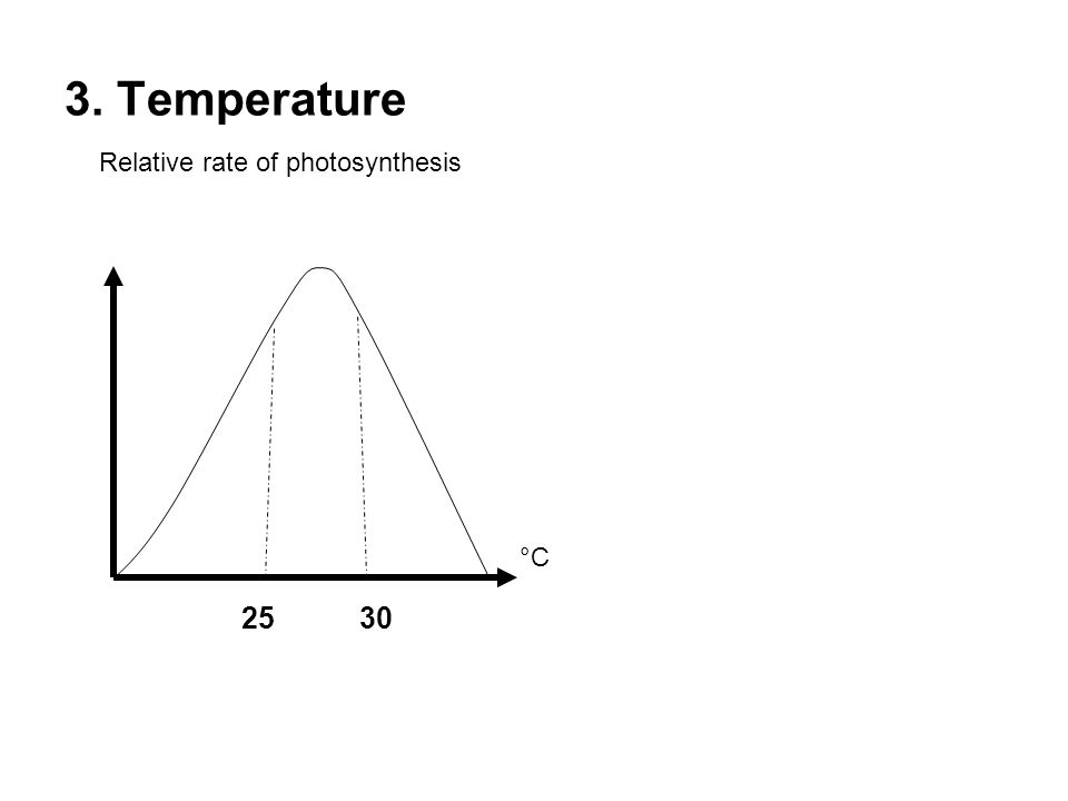 3. Temperature Relative rate of photosynthesis °C 2530
