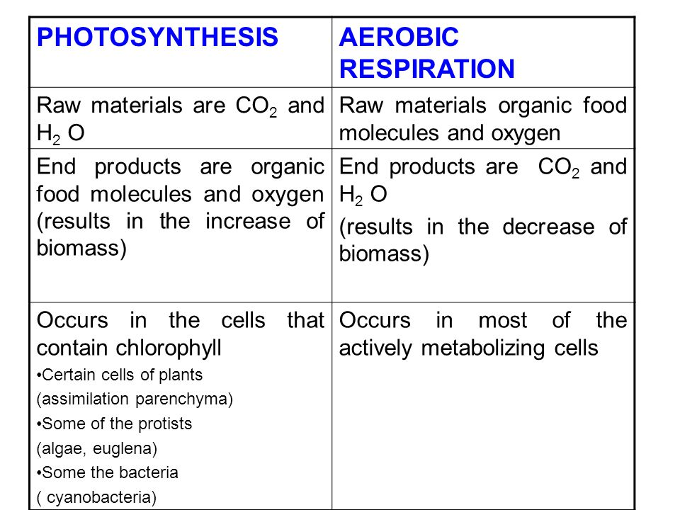 PHOTOSYNTHESISAEROBIC RESPIRATION Raw materials are CO 2 and H 2 O Raw materials organic food molecules and oxygen End products are organic food molec