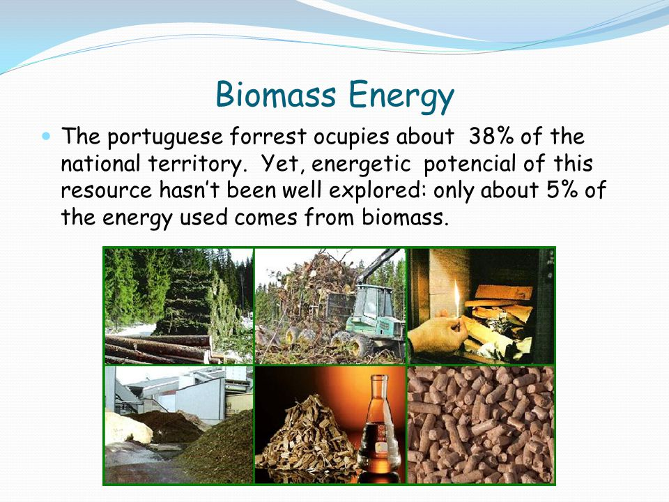 Biomass Energy The portuguese forrest ocupies about 38% of the national territory. Yet, energetic potencial of this resource hasn't been well explored