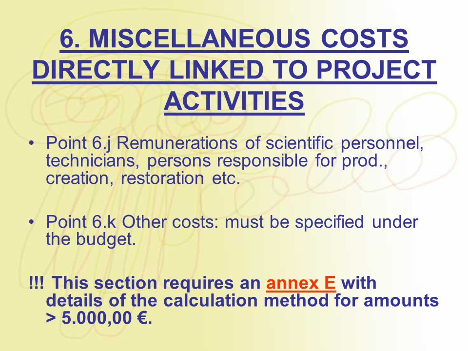 6. MISCELLANEOUS COSTS DIRECTLY LINKED TO PROJECT ACTIVITIES Point 6.j Remunerations of scientific personnel, technicians, persons responsible for pro