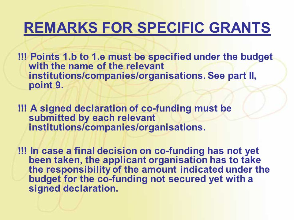 REMARKS FOR SPECIFIC GRANTS !!! Points 1.b to 1.e must be specified under the budget with the name of the relevant institutions/companies/organisation
