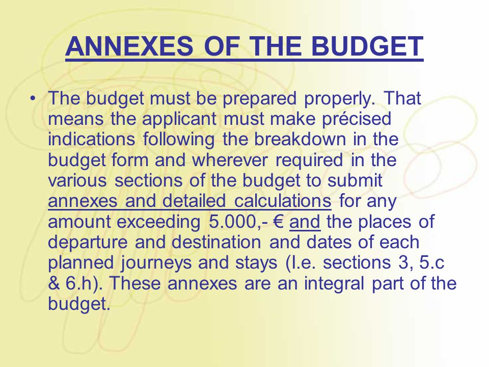 ANNEXES OF THE BUDGET The budget must be prepared properly. That means the applicant must make précised indications following the breakdown in the bud