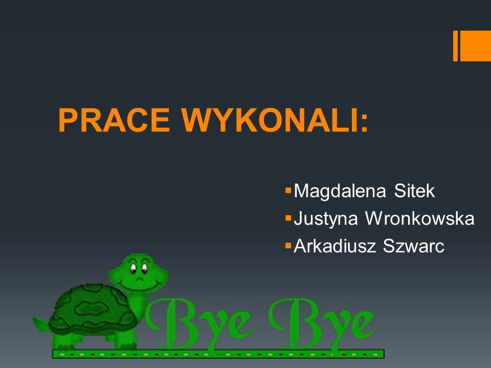PRACE WYKONALI:  Magdalena Sitek  Justyna Wronkowska  Arkadiusz Szwarc