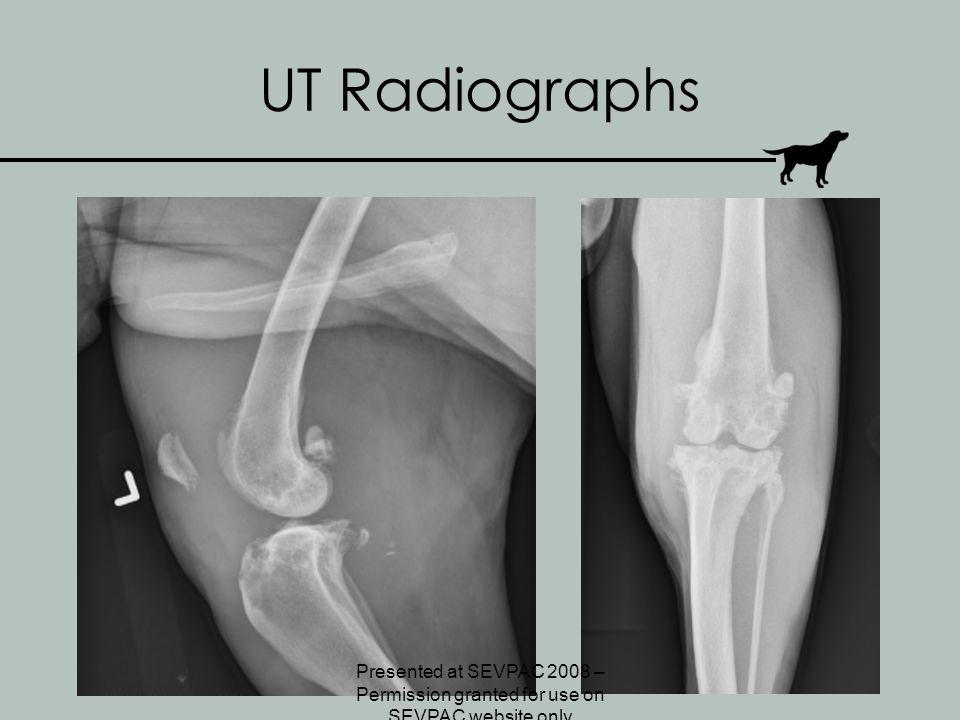 UT Radiographs Presented at SEVPAC 2008 – Permission granted for use on SEVPAC website only