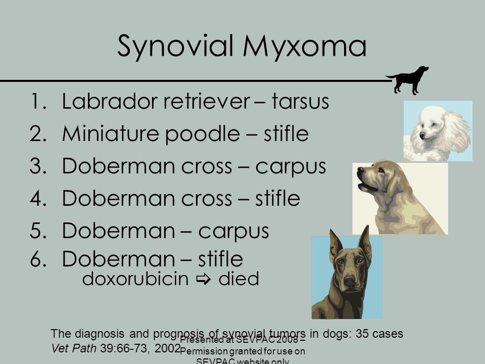 Synovial Myxoma 1.Labrador retriever – tarsus 2.Miniature poodle – stifle 3.Doberman cross – carpus 4.Doberman cross – stifle 5.Doberman – carpus 6.Do