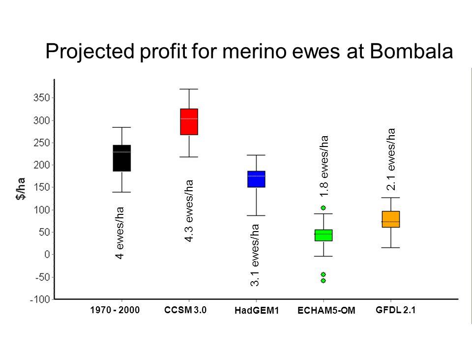 Projected profit for merino ewes at Bombala CCSM 3.0 HadGEM1ECHAM5-OM GFDL 2.1 1970 - 2000 4 ewes/ha 4.3 ewes/ha 3.1 ewes/ha 1.8 ewes/ha 2.1 ewes/ha