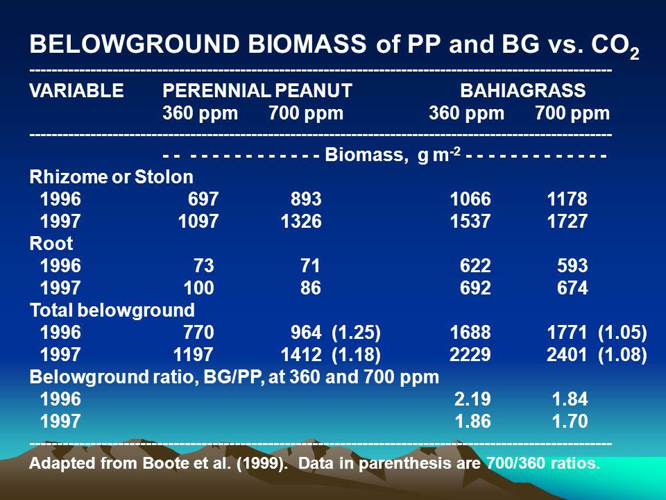 BELOWGROUND BIOMASS of PP and BG vs.