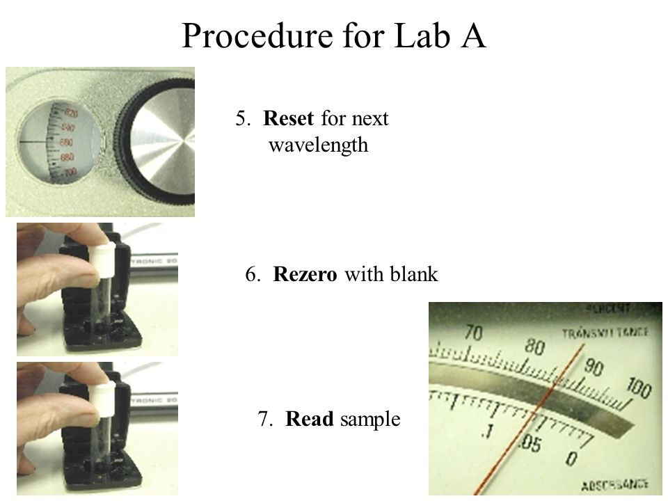 Procedure for Lab A 5. Reset for next wavelength 6. Rezero with blank 7. Read sample