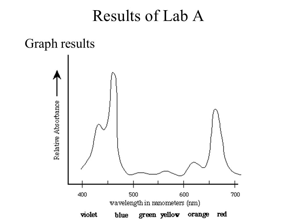 Results of Lab A Graph results