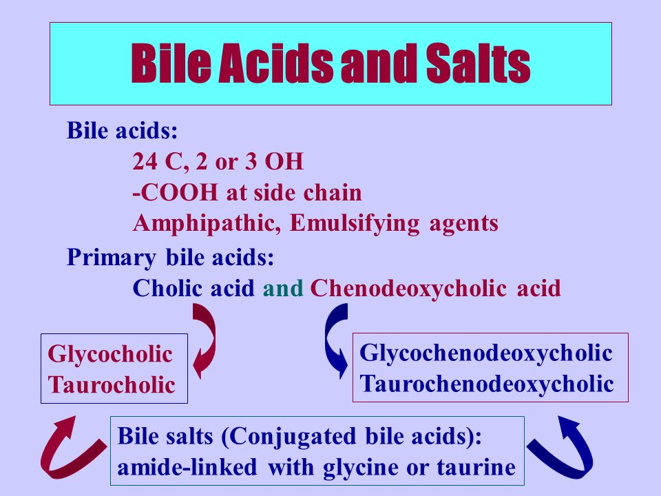 Bile Acids and Salts Primary bile acids: Cholic acid and Chenodeoxycholic acid Bile acids: 24 C, 2 or 3 OH -COOH at side chain Amphipathic, Emulsifying agents Bile salts (Conjugated bile acids): amide-linked with glycine or taurine Glycocholic Taurocholic Glycochenodeoxycholic Taurochenodeoxycholic
