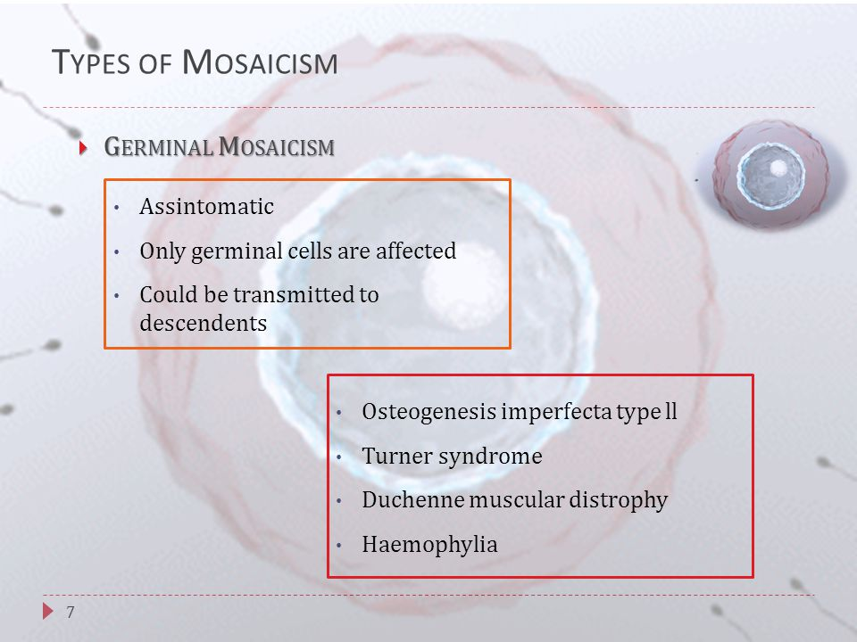 T YPES OF M OSAICISM 7  G ERMINAL M OSAICISM Assintomatic Only germinal cells are affected Could be transmitted to descendents Osteogenesis imperfecta type ll Turner syndrome Duchenne muscular distrophy Haemophylia