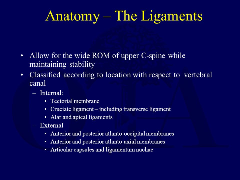 Anatomy – The Ligaments Allow for the wide ROM of upper C-spine while maintaining stability Classified according to location with respect to vertebral