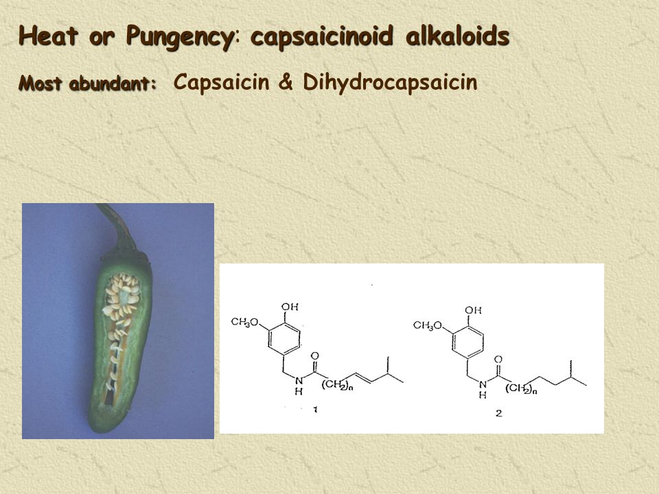 Heat or Pungencycapsaicinoid alkaloids Most abundant: Heat or Pungency: capsaicinoid alkaloids Most abundant: Capsaicin & Dihydrocapsaicin