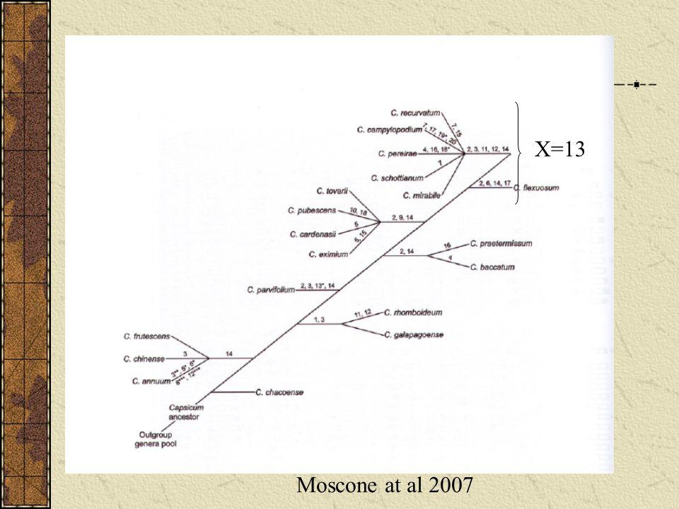 Moscone at al 2007 X=13