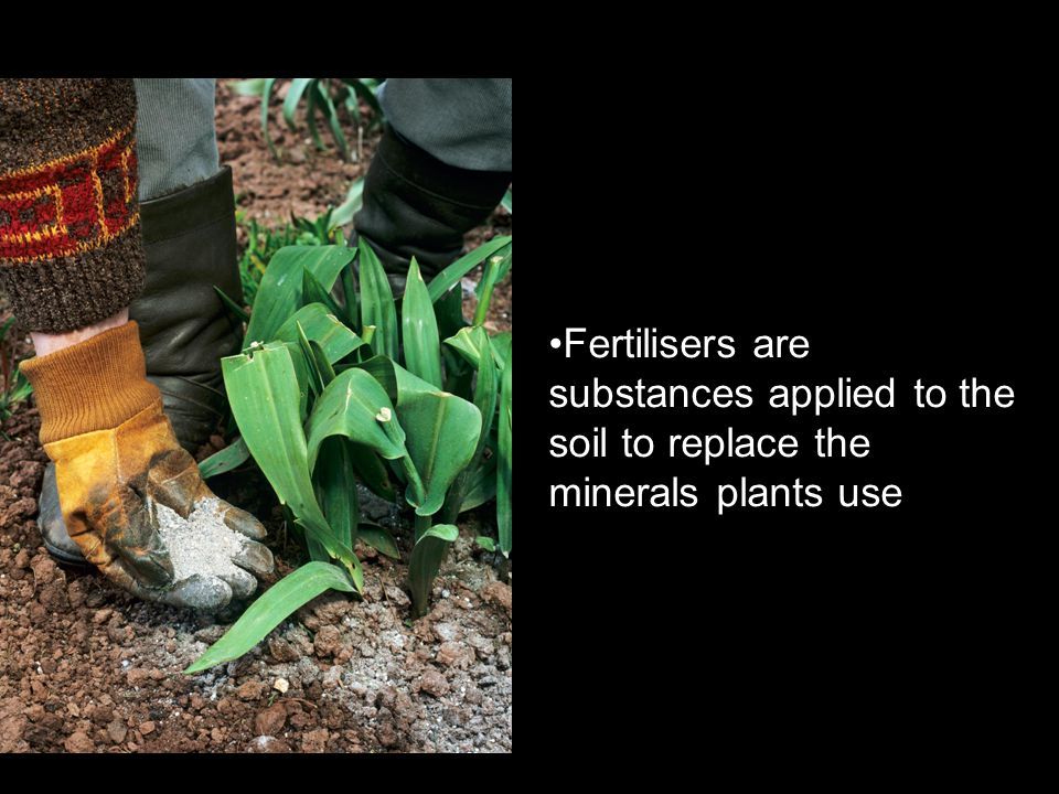 Fertilisers are substances applied to the soil to replace the minerals plants use