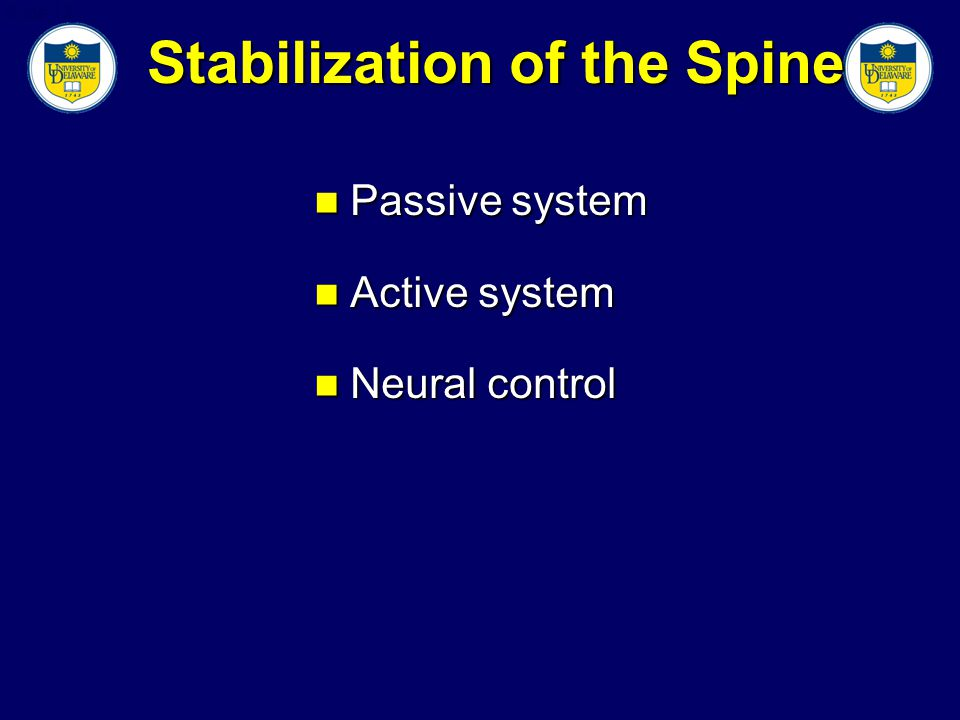 Slide 13 Stabilization of the Spine Passive system Passive system Active system Active system Neural control Neural control