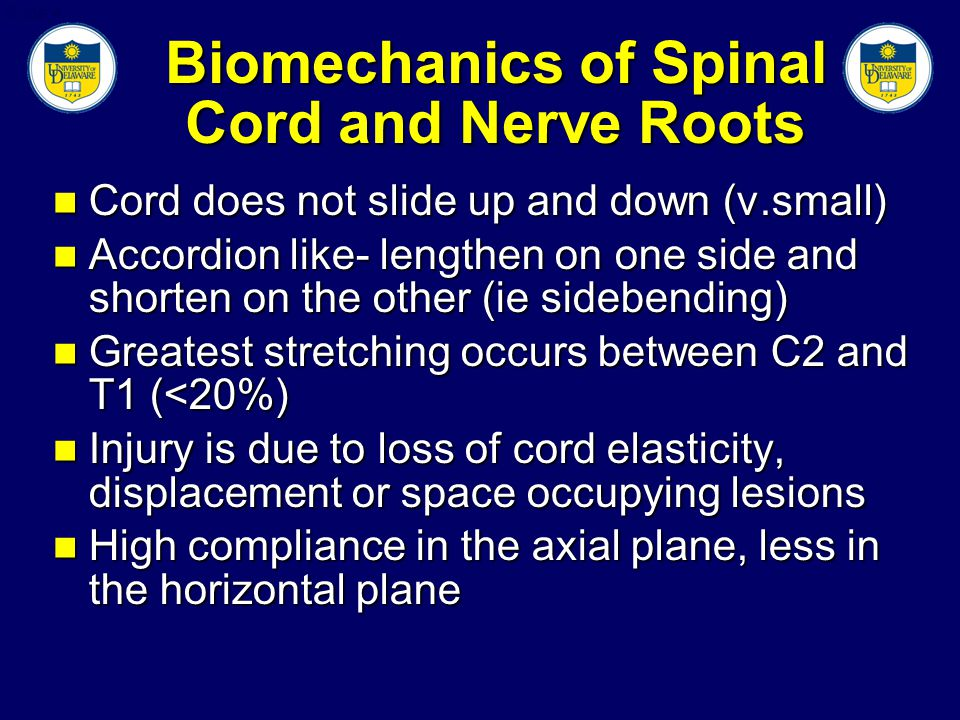 Slide 4 Biomechanics of Spinal Cord and Nerve Roots Cord does not slide up and down (v.small) Cord does not slide up and down (v.small) Accordion like- lengthen on one side and shorten on the other (ie sidebending) Accordion like- lengthen on one side and shorten on the other (ie sidebending) Greatest stretching occurs between C2 and T1 (<20%) Greatest stretching occurs between C2 and T1 (<20%) Injury is due to loss of cord elasticity, displacement or space occupying lesions Injury is due to loss of cord elasticity, displacement or space occupying lesions High compliance in the axial plane, less in the horizontal plane High compliance in the axial plane, less in the horizontal plane