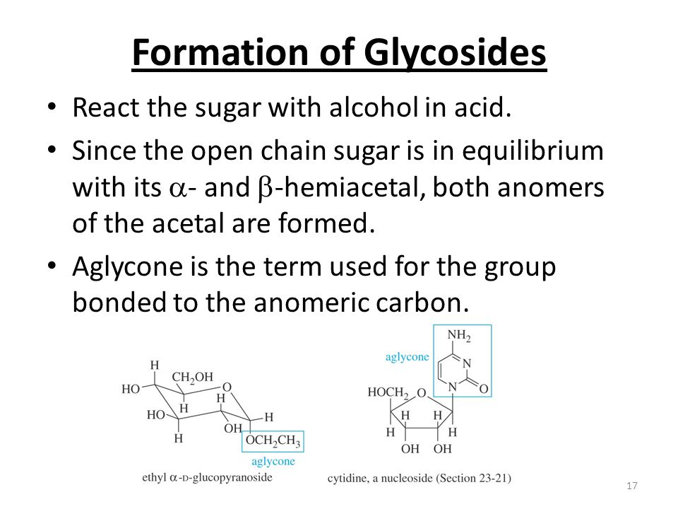 Chapter 2317 Formation of Glycosides React the sugar with alcohol in acid. Since the open chain sugar is in equilibrium with its  - and  -hemiacetal