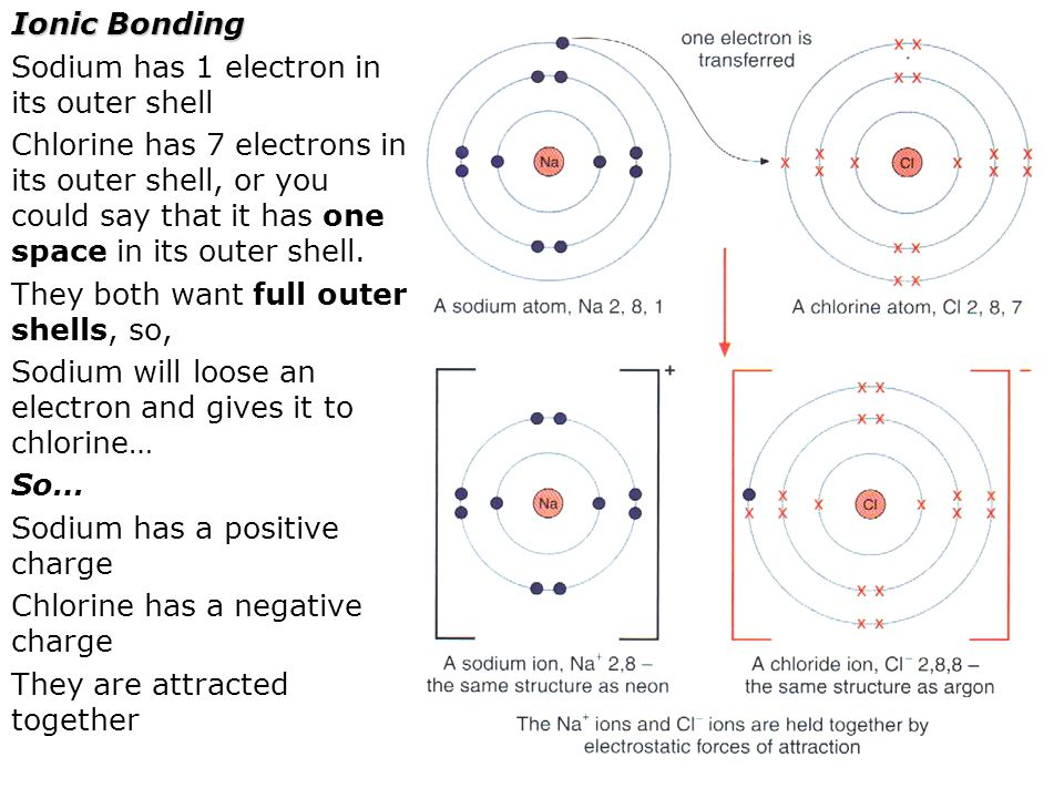 Ionic Bonding Sodium has 1 electron in its outer shell Chlorine has 7 electrons in its outer shell, or you could say that it has one space in its oute