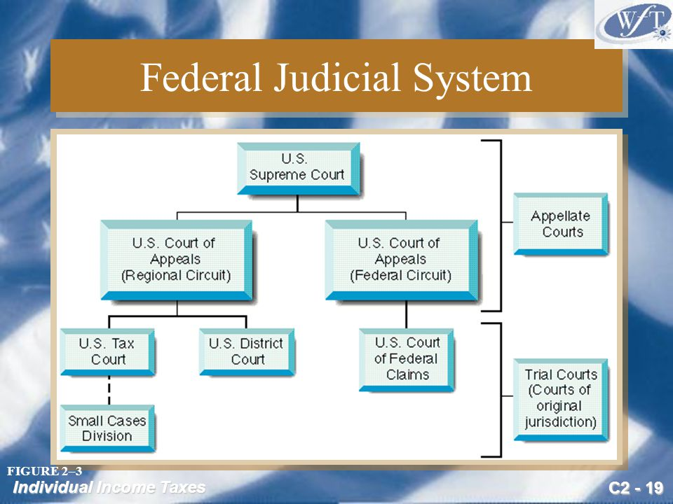 C2 - 19 Individual Income Taxes Federal Judicial System FIGURE 2–3