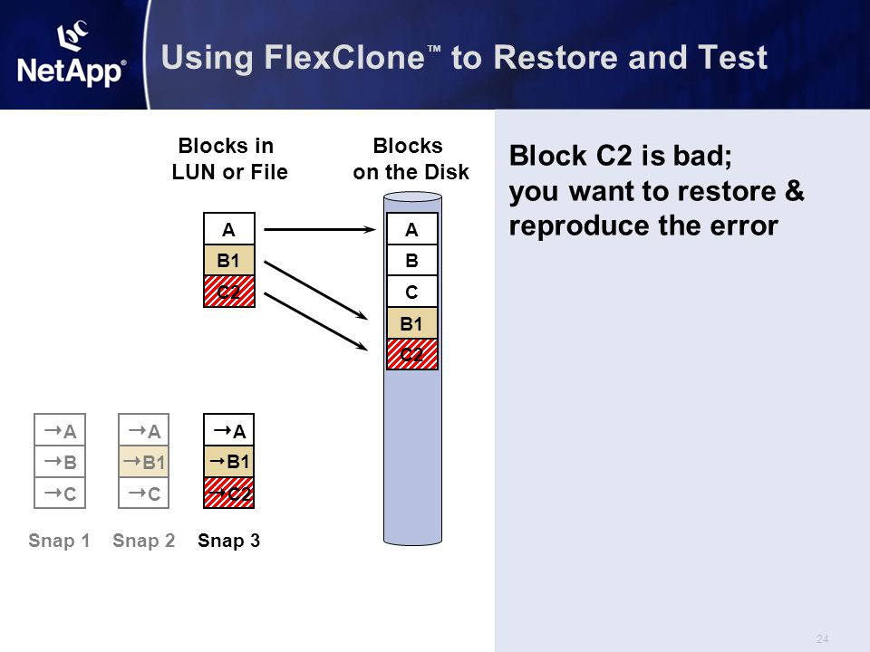 24 Using FlexClone ™ to Restore and Test  C2 AA  B1 Snap 3 AA  B1 CC Snap 2 Blocks in LUN or File Blocks on the Disk A B C A B C B1 C2 AA BB CC Snap 1 C2 Block C2 is bad; you want to restore & reproduce the error