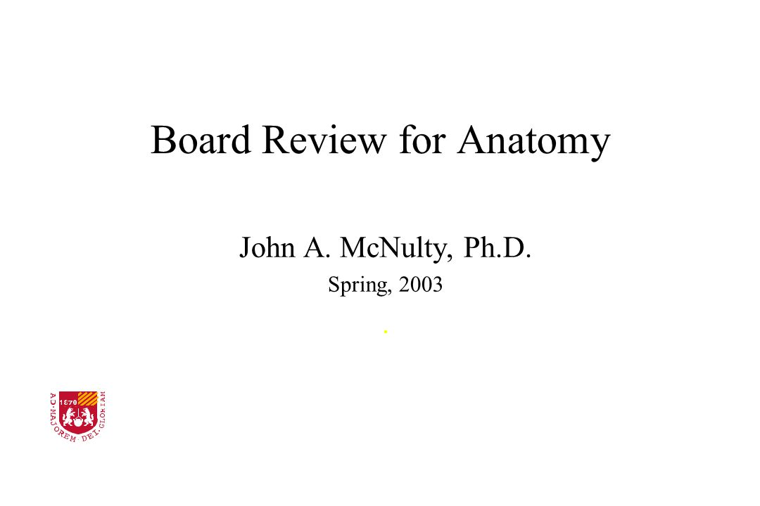 Board Review for Anatomy John A. McNulty, Ph.D. Spring, 2003. Stritch School of Medicine LOYOLA UNIVERSITY CHICAGO