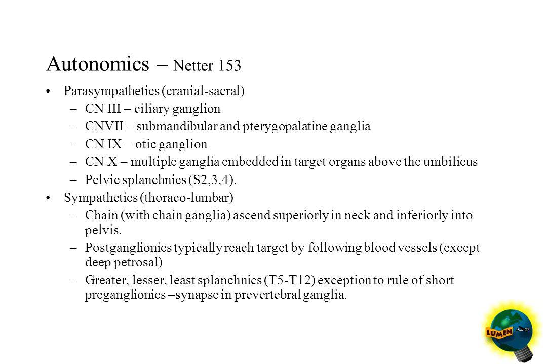 Autonomics – Netter 153 Parasympathetics (cranial-sacral) –CN III – ciliary ganglion –CNVII – submandibular and pterygopalatine ganglia –CN IX – otic
