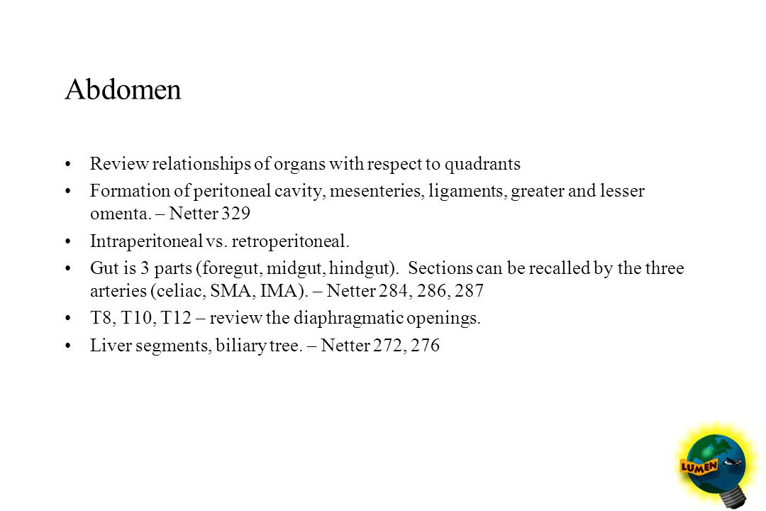 Abdomen Review relationships of organs with respect to quadrants Formation of peritoneal cavity, mesenteries, ligaments, greater and lesser omenta. –