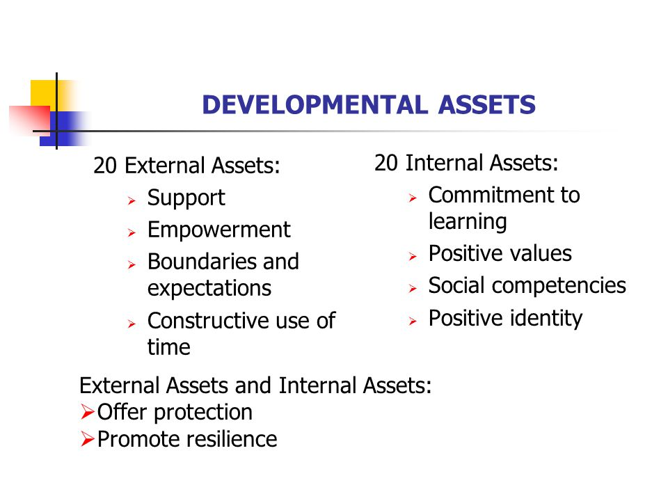 DEVELOPMENTAL ASSETS 20 External Assets:  Support  Empowerment  Boundaries and expectations  Constructive use of time 20 Internal Assets:  Commitment to learning  Positive values  Social competencies  Positive identity External Assets and Internal Assets:  Offer protection  Promote resilience