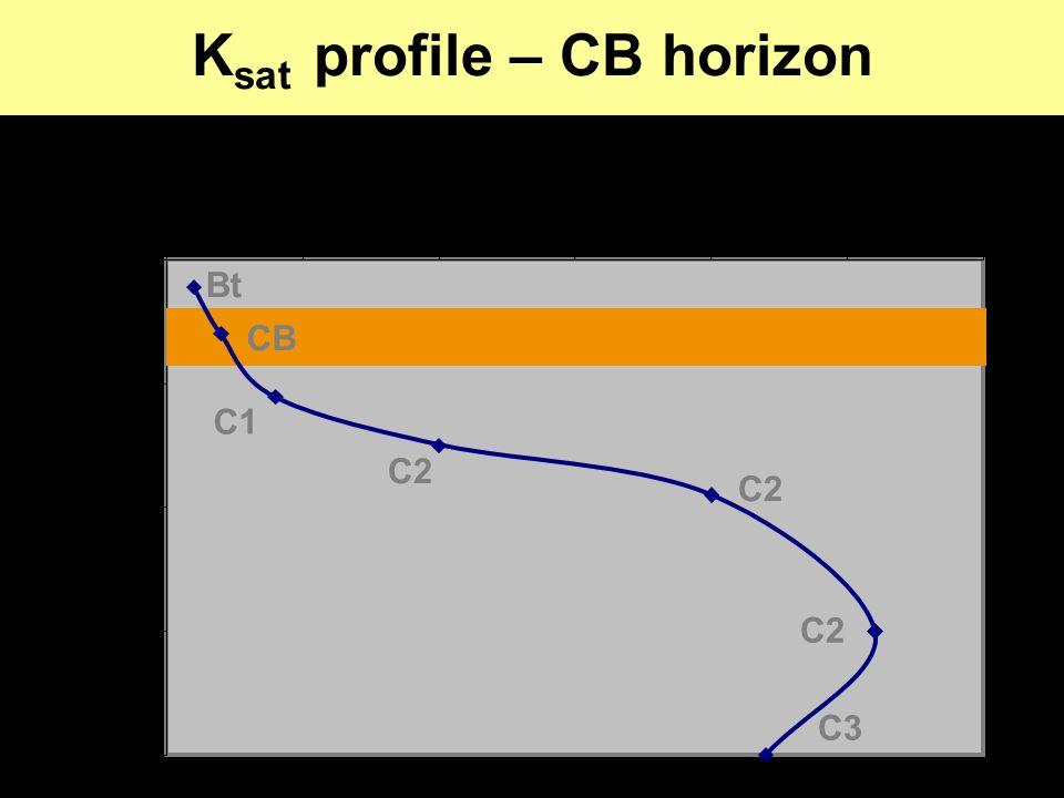 K sat profile – CB horizon 0 100 200 300 400 00.511.522.53 K sat (cm h -1 ) Depth (cm) C2 CB C2 C1 Bt C3