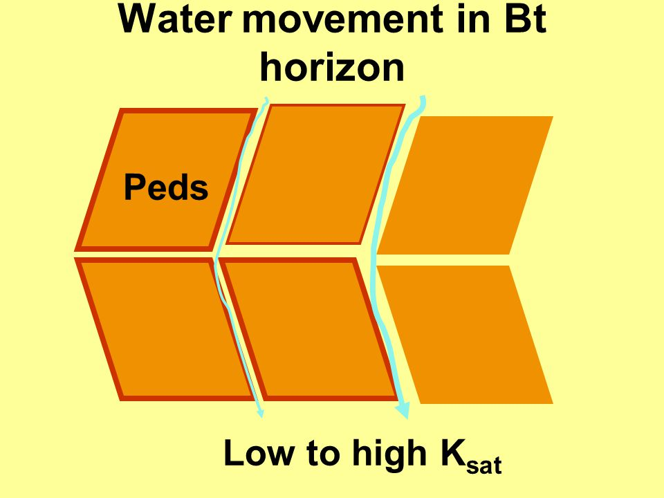 Water movement in Bt horizon Low to high K sat Peds