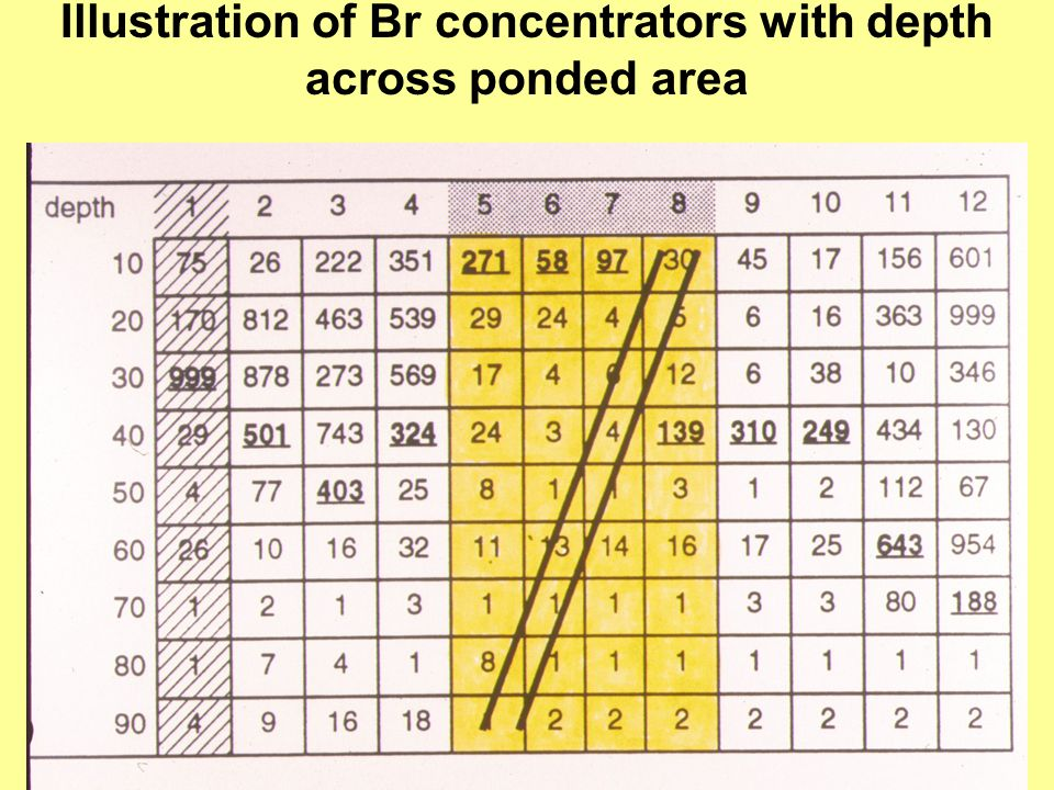 Illustration of Br concentrators with depth across ponded area