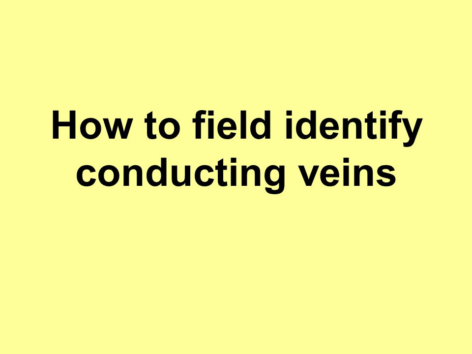 How to field identify conducting veins