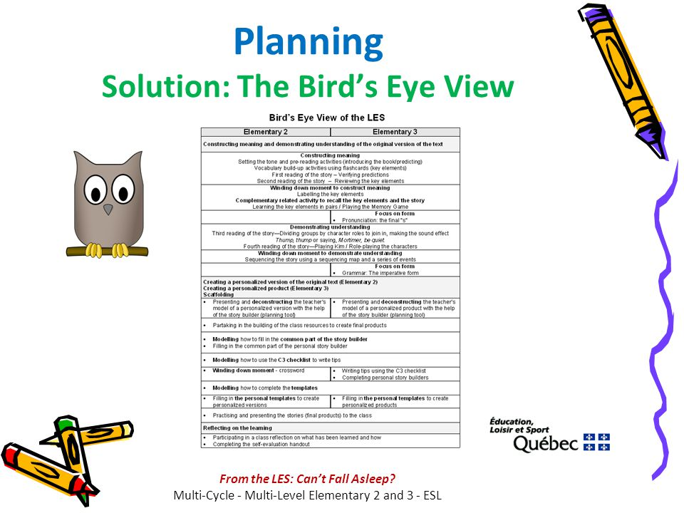 Planning Solution: The Bird's Eye View From the LES: Can't Fall Asleep? Multi-Cycle - Multi-Level Elementary 2 and 3 - ESL