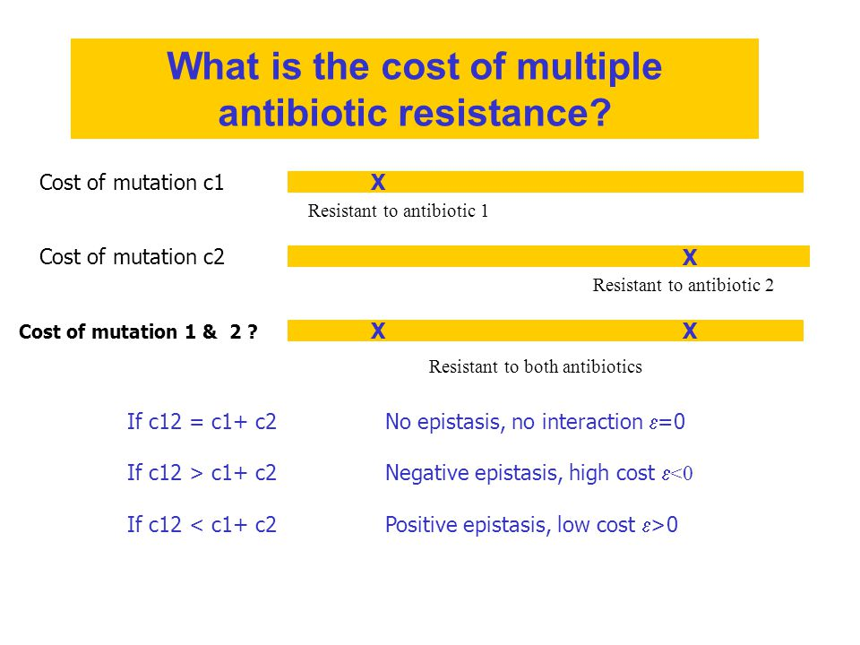 If c12 = c1+ c2No epistasis, no interaction  =0 If c12 > c1+ c2Negative epistasis, high cost  <0 If c12 0 X X XX Cost of mutation c1 Cost of mutation c2 Cost of mutation 1 & 2 .