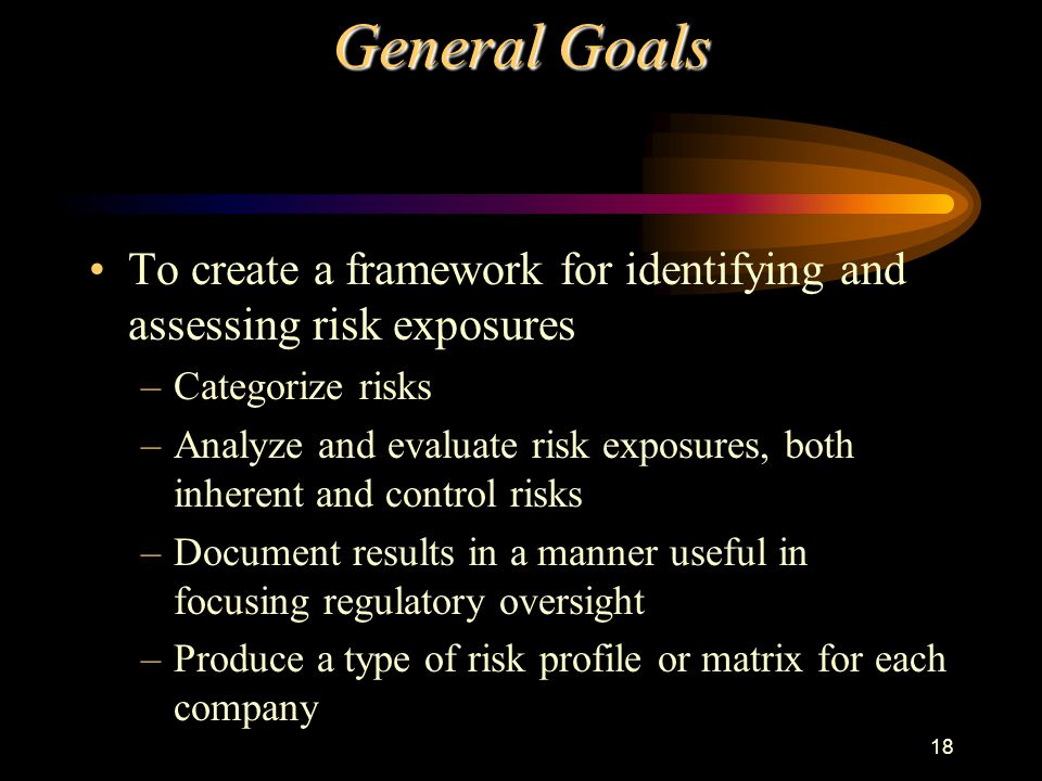 18 General Goals To create a framework for identifying and assessing risk exposures –Categorize risks –Analyze and evaluate risk exposures, both inherent and control risks –Document results in a manner useful in focusing regulatory oversight –Produce a type of risk profile or matrix for each company