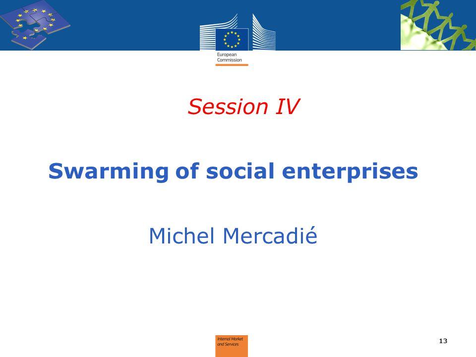 Session IV Swarming of social enterprises Michel Mercadié 13