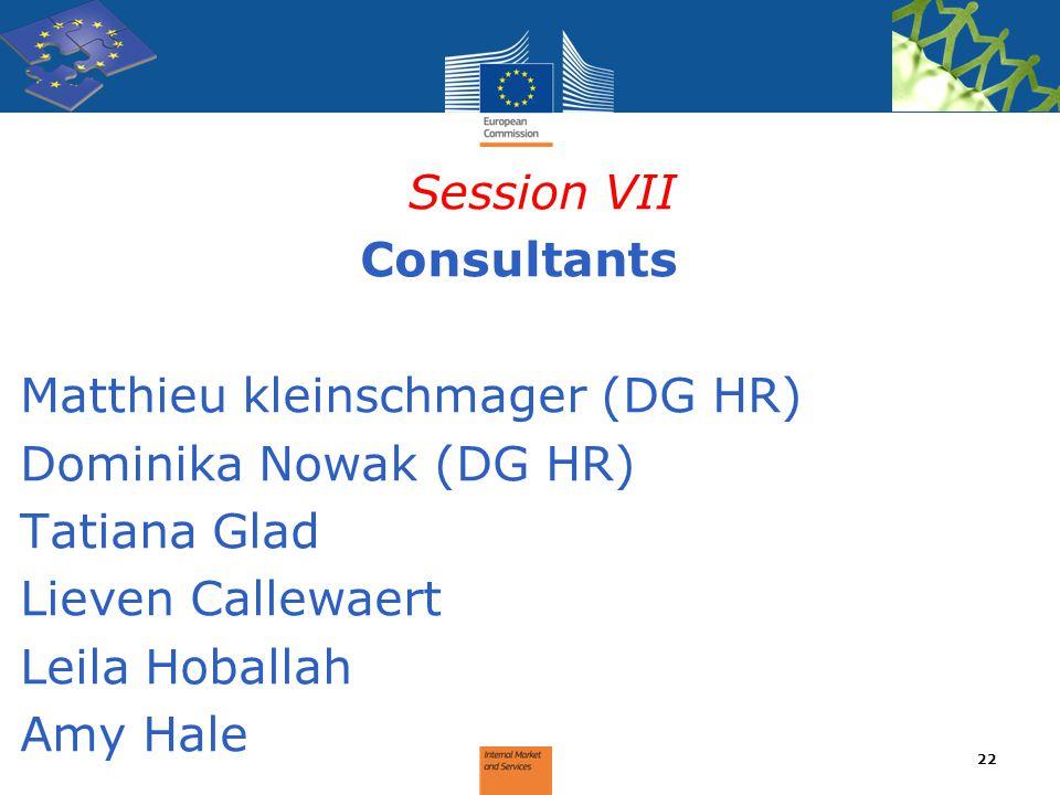 Session VII Consultants Matthieu kleinschmager (DG HR) Dominika Nowak (DG HR) Tatiana Glad Lieven Callewaert Leila Hoballah Amy Hale 22