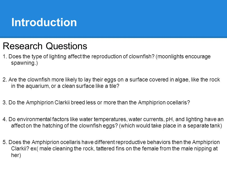 Introduction Research Questions 1. Does the type of lighting affect the reproduction of clownfish.