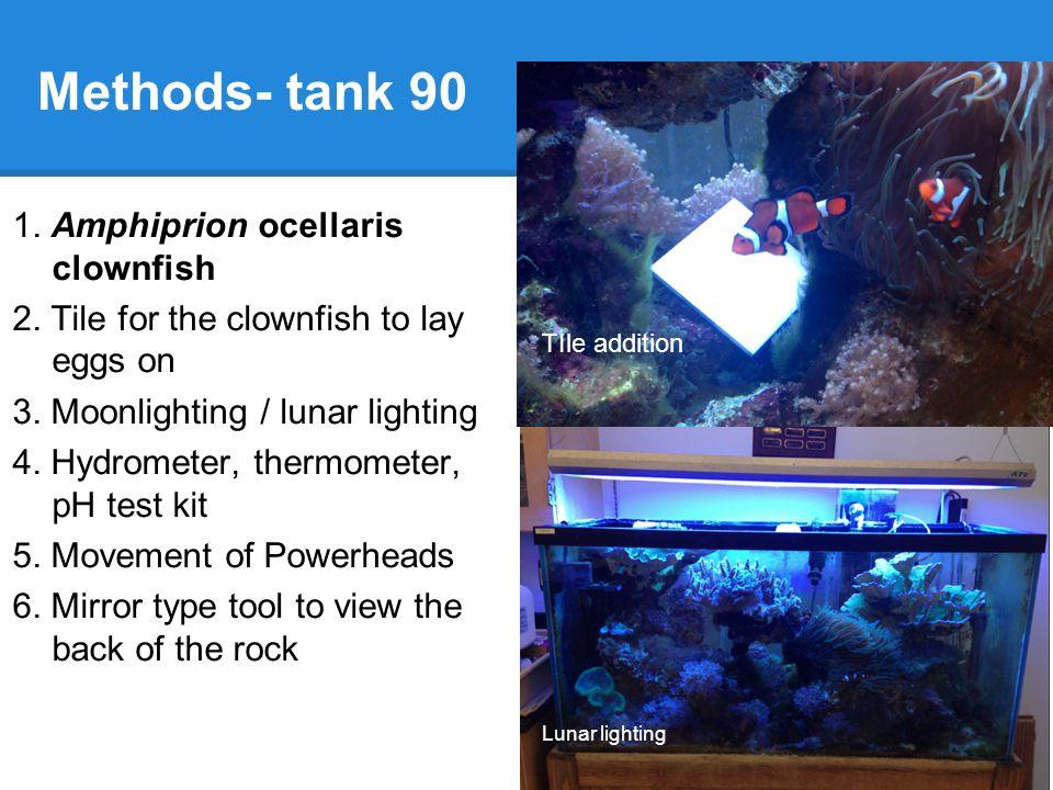 Methods- Tank C2 1.Amphiprion clarkii 2. Fake anemone 3.
