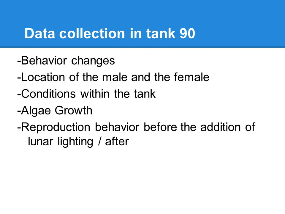 Data collection in tank 90 -Behavior changes -Location of the male and the female -Conditions within the tank -Algae Growth -Reproduction behavior before the addition of lunar lighting / after