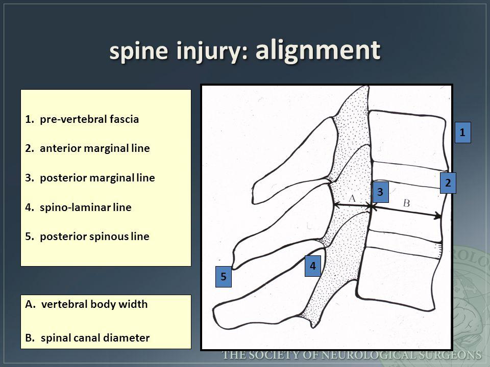 spine injury: alignment 1. pre-vertebral fascia 2. anterior marginal line 3. posterior marginal line 4. spino-laminar line 5. posterior spinous line A