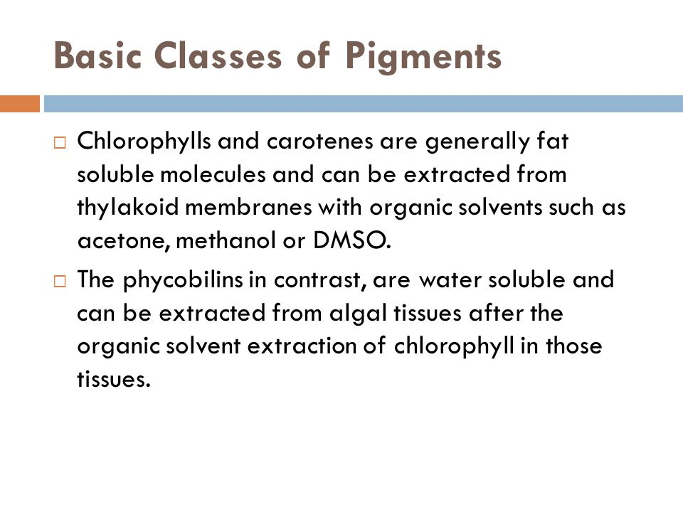 Basic Classes of Pigments  Chlorophylls and carotenes are generally fat soluble molecules and can be extracted from thylakoid membranes with organic solvents such as acetone, methanol or DMSO.